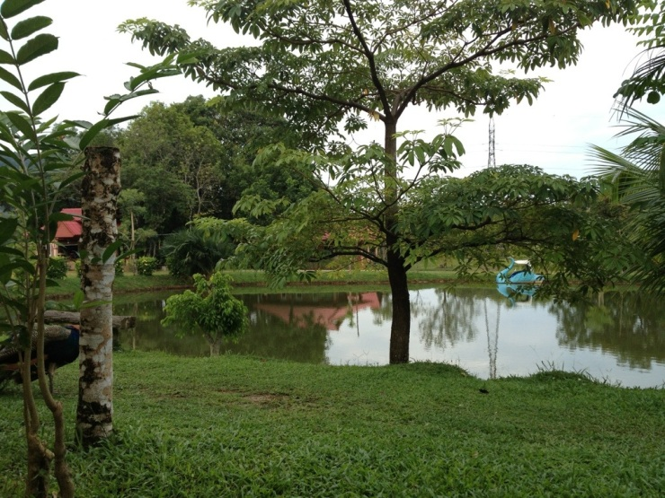 20121224-161046.jpg