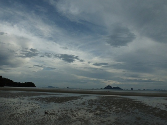 20121231-132037.jpg